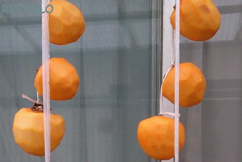 吊るした渋柿