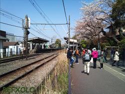 春の北鎌倉駅