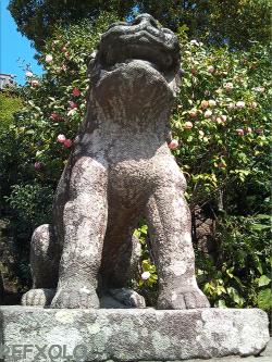 k狛犬阿形鶴岡八幡宮100410.jpg