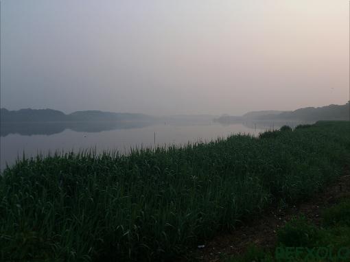 霧の佐鳴湖