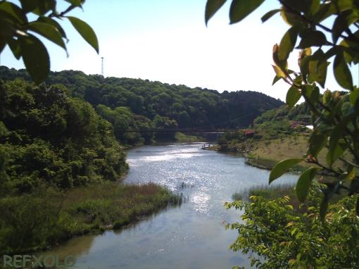 増沢池とつり橋