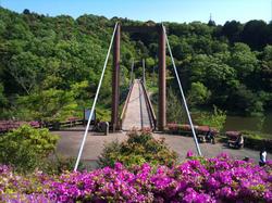 増沢池の吊り橋