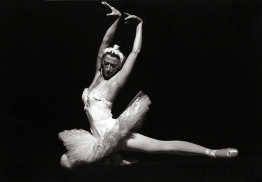 maya plisetskaya Dying Swan