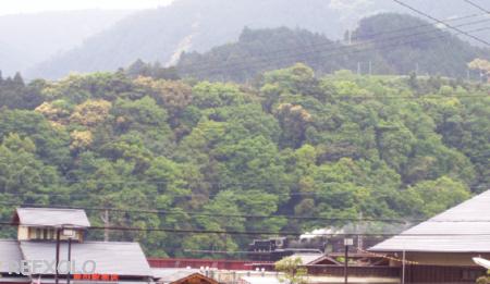 写真:鉄橋を渡るSLの画像
