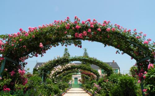 写真:つる薔薇のアーチとモネの家の画像