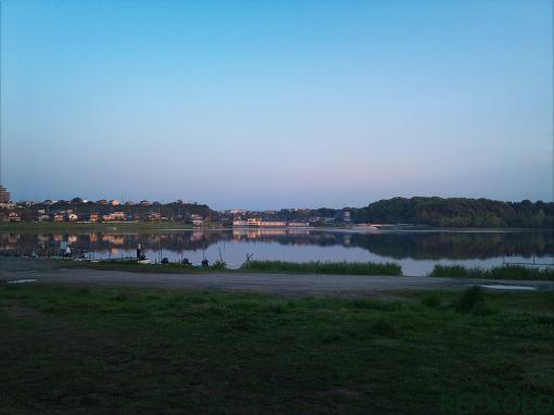 佐鳴湖の朝