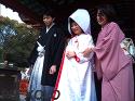 神前結婚式鶴岡八幡宮