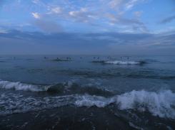 写真:早朝の海のサーファー達の画像