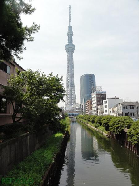 写真十間橋から見た東京スカイツリーの画像