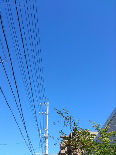 梅雨明けの青空20120717