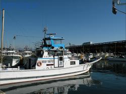 由比漁港に停まる漁船