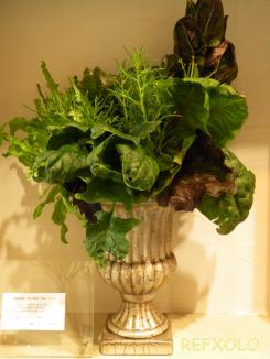 写真:野菜のオブジェの画像