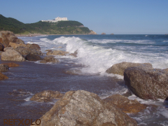 写真:恋路が浜の画像2