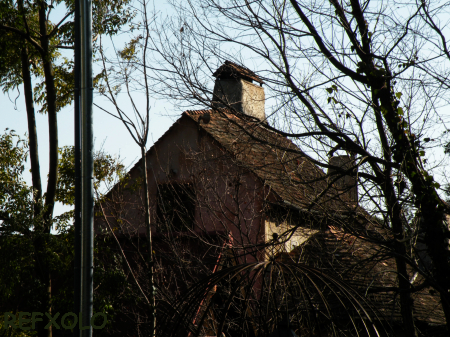 写真:ぬくもりの森の家の画像その1